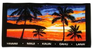 HawaiiSunBB